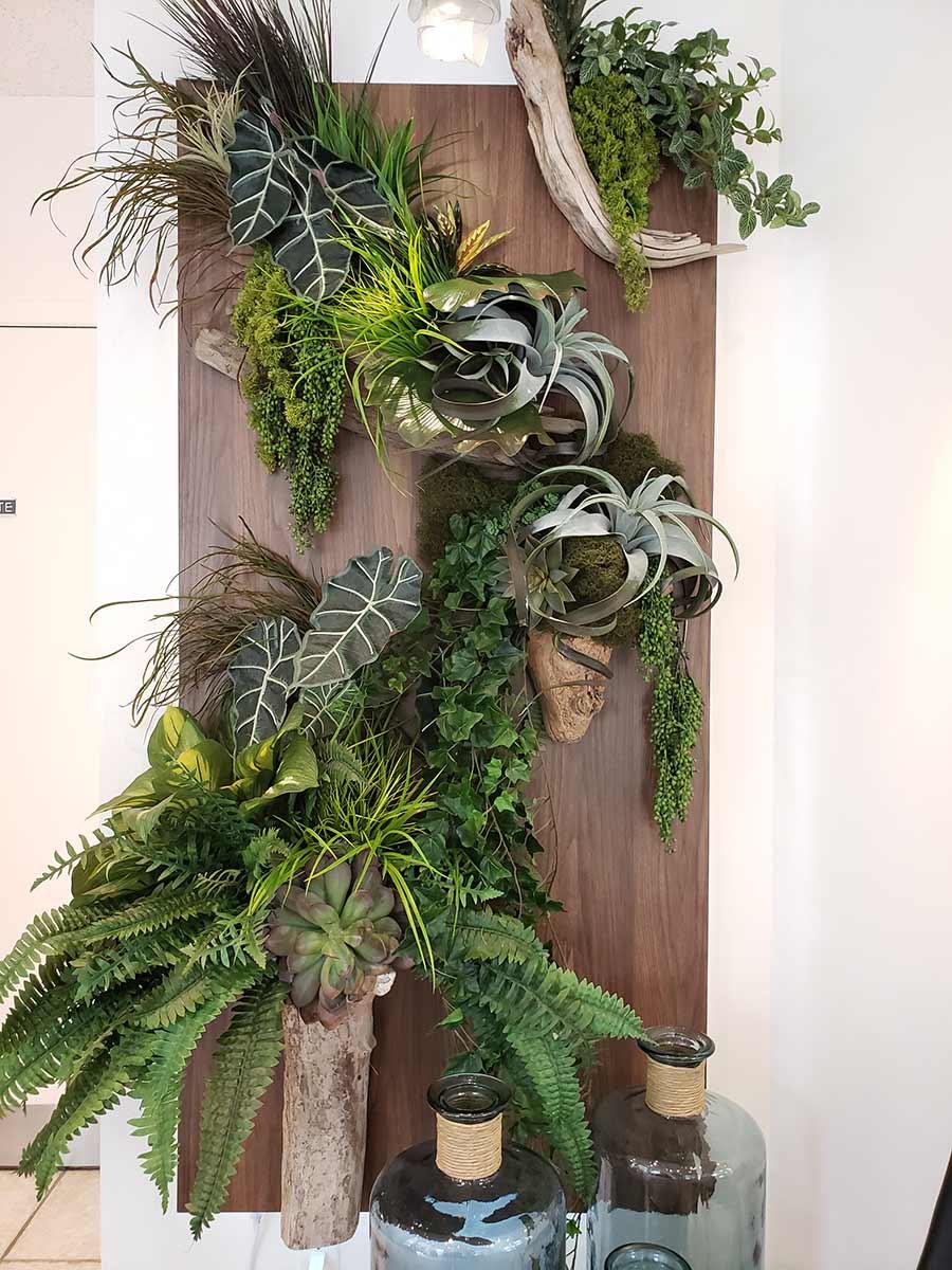mur végétal - Clinique dentaire Richard Landry